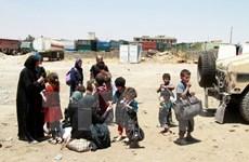 Liên hợp quốc: Hơn 800.000 người chạy khỏi Mosul vẫn chưa trở về