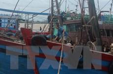 Nghệ An: Tàu chở than gặp nạn, 13 người mất tích trên biển