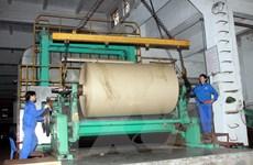 Việt Nam-Indonesia hợp tác thương mại trong ngành dầu cọ và giấy