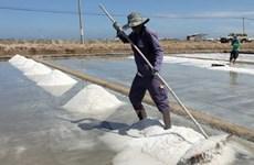 Thực hư thông tin muối làm theo phương pháp trải bạt gây ung thư