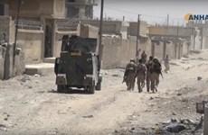 Syria: IS có kế hoạch sử dụng vũ khí hóa học tại thành phố Raqqa