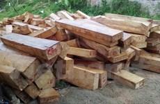 Xác minh thông tin chủ tịch xã sở hữu khối lượng lớn gỗ để làm nhà