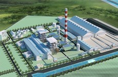 Yêu cầu PVN giải đáp việc chọn gói thầu tại nhiệt điện Thái Bình II