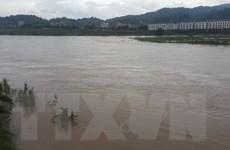 Sông Hồng và sông Chảy đoạn qua Lào Cai xuất hiện lũ lớn
