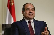 Tổng thống Cộng hòa Arab Ai Cập sắp thăm cấp Nhà nước tới Việt Nam