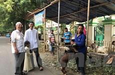 Cận cảnh lễ hiến tế Idul Adha của người Hồi giáo tại Indonesia