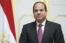 [Mega Story] Mở ra trang sử mới trong quan hệ Việt Nam-Ai Cập