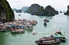 Đình chỉ hoạt động của một tàu du lịch có sai phạm trên Vịnh Hạ Long