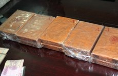 Thanh Hóa triệt phá vụ vận chuyển 15 bánh heroin, 5kg ma túy đá