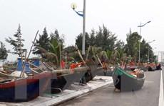 Các địa phương ven biển chủ động ứng phó với cơn bão số 10