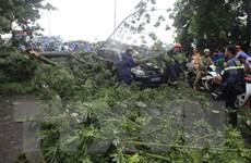 Lốc xoáy cục bộ gây nhiều thiệt hại tại tỉnh Thừa Thiên-Huế