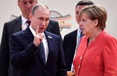 Tổng thống Nga Putin khẳng định sẵn sàng hợp tác cùng có lợi với Đức