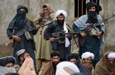 Thủ lĩnh Taliban kêu gọi những người ủng hộ ngừng đối đầu với IS