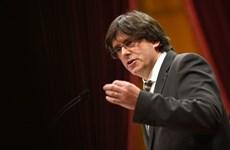 Chính phủ Tây Ban Nha kêu gọi cựu Thủ hiến Catalonia đứng ra tranh cử