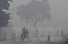 Ấn Độ cấm xe cỡ lớn vào thủ đô để hạn chế ô nhiễm không khí