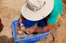 Tìm thấy khoảng 30.000 di vật tại di chỉ Gò Cây Me ở Bình Định