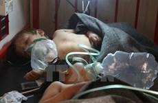 Mỹ, Nga mâu thuẫn về điều tra tấn công bằng vũ khí hóa học tại Syria