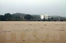 Mưa lớn trên diện rộng ở Quảng Ngãi, một bé gái bị lũ cuốn trôi
