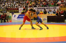 125 vận động viên dự Giải vô địch Đông Nam Á vật cổ điển, vật tự do