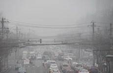 Trung Quốc: Tỷ lệ tử vong vì bệnh tim mạch tăng do ô nhiễm ozone
