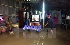 Thừa Thiên-Huế phân bổ gạo hỗ trợ nhân dân vùng bị thiên tai