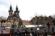 Ngắm cây thông Noel Nữ hoàng tại chợ Giáng Sinh ở trung tâm Prague