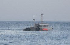 Tàu cá Đài Loan bị nạn trên biển, một lao động Việt Nam mất tích