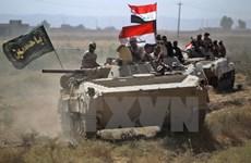 Quân đội Iraq mở chiến dịch truy quét tàn quân IS ở vùng nông thôn