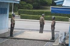 Mục đích đằng sau đề xuất đàm phán hiếm hoi của Triều Tiên