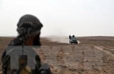 Pháp kêu gọi phương Tây đóng góp giải quyết vấn đề Syria