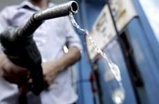 Một doanh nghiệp bị phạt 600 triệu đồng vì bán xăng kém chất lượng