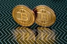 Bộ trưởng Tài chính Mỹ khuyến cáo rủi ro từ đồng tiền ảo Bitcoin