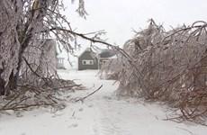 Canada: Mưa băng gây tê liệt hoạt động giao thông ở Quebec