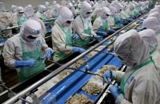 Xuất khẩu hải sản sang EU chuyển biến tốt trong đầu năm nay