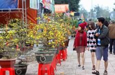 Người nước ngoài hào hứng với không khí Tết Nguyên đán ở Việt Nam