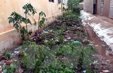 Điện Biên: Giông lốc bất ngờ kèm theo mưa đá, 4 nhà dân bị hư hại