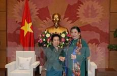 Ủy ban Dân tộc Việt-Lào tăng cường hơn nữa quan hệ hợp tác
