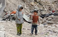 SOHR: Khoảng 511.000 người thiệt mạng trong xung đột ở Syria