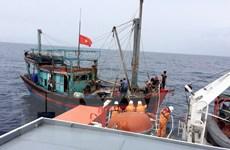 Đưa tàu cá cùng 8 thuyền viên gặp nạn vào cảng Cửa Lò an toàn
