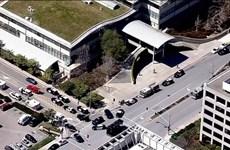 Mỹ: Xả súng tại trụ sở YouTube, ít nhất 3 người bị thương