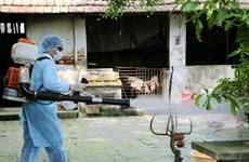 Cà Mau ghi nhận ca tử vong đầu tiên do bệnh sốt xuất huyết