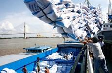 Bị doanh nghiệp Trung Quốc ép giá, xuất khẩu gạo nếp gặp khó