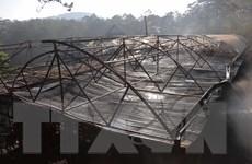 Cháy lớn lúc rạng sáng thiêu rụi khu sản xuất sâm Ngọc Linh ở Đà Lạt