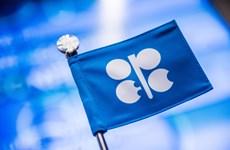 OPEC: Tình trạng dư thừa dầu mỏ trên toàn cầu đang mất dần