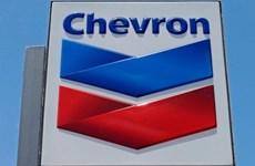 Venezuela bắt giữ 2 lãnh đạo chi nhánh Tập đoàn dầu khí Chevron