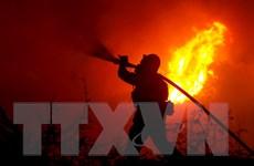 Nhiều doanh nghiệp nhỏ của Mỹ không được hưởng bảo hiểm về thiên tai