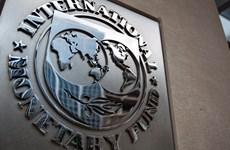 IMF: Nạn tham nhũng và quản trị kém hủy hoại tăng trưởng kinh tế