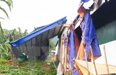 Lốc xoáy gây nhiều thiệt hại ở Đạ Huoai, 1 cây cầu treo bị sập