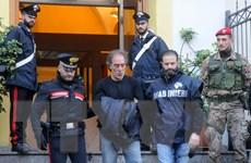 Hàng nghìn người tuần hành chống mafia trên khắp đất nước Italy