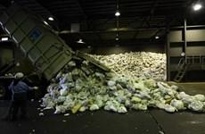 Phân loại và tái chế rác thải nhựa phong cách của người Nhật